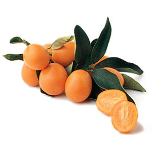 Fruit Game Option - Kumquat