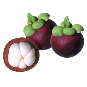 Fruit Game Option - Purple Mangosteeen