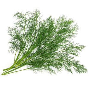 Vegetable Game Option - Dill