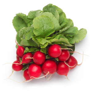 Vegetable Game Option - Radish
